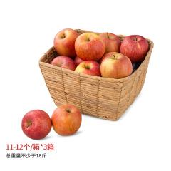 新疆阿克苏冰糖心苹果分享组 货号122147